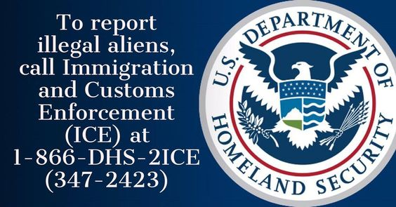 Report Illegal Immigration
